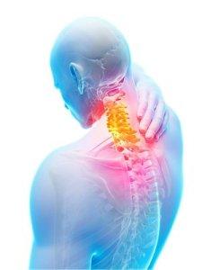chiropractor-graphic